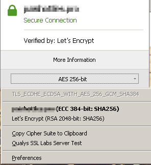 AES256 negotiated with firefox (shown using cipherFox plugin on firefox)